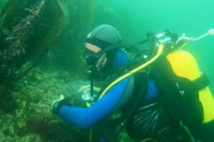 Plongeur en prélèvement