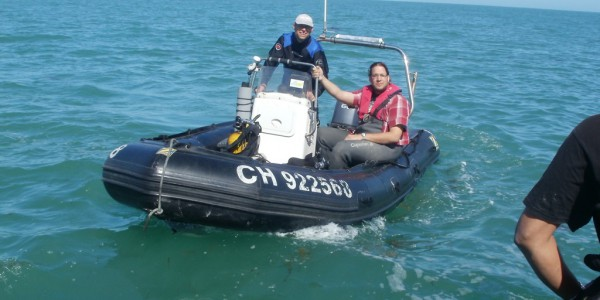Plongée sur les oeufs de seiche avec le Donax (@SMEL)
