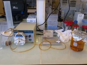 Filtrat (becher à droite) obtenu par ultra filtration (C. Michel/SMEL)