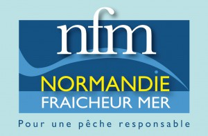 logo NFM