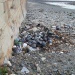 Les déchets de la pêche et de la conchyliculture sont des trésors à valoriser….