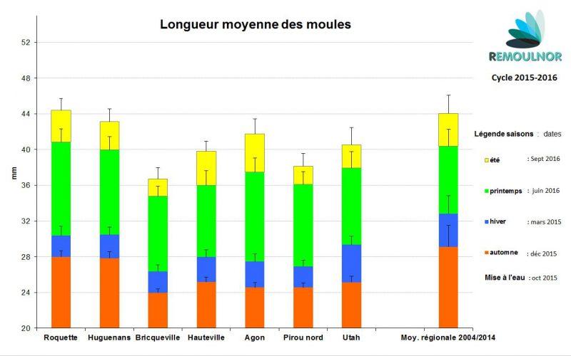 Longueur moyenne des moules