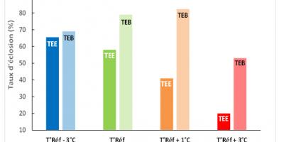 Taux d'éclosion en fonction de la température de référence