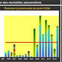 Lingreville Mortalité Juvéniles