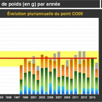 Chausey Croissance Adultes