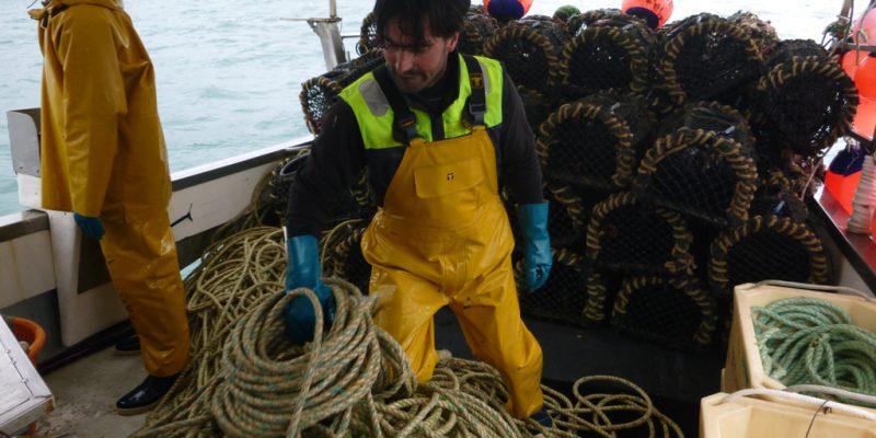 La pêche scientifique à bord du Téthys, patronné par Sébastien Cauchon (@SMEL)