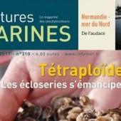 La Normandie dans Cultures Marines.